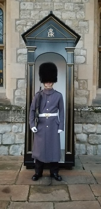 A Tower Guard